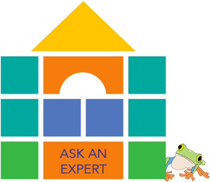 A castle of cartoon blocks with a cartoon frog beside them, representing the 'ask an expert' section