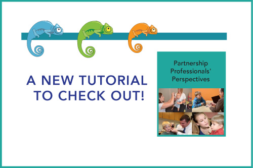 A New Tutorial to Check Out! Partnership Professionals' Perspectives